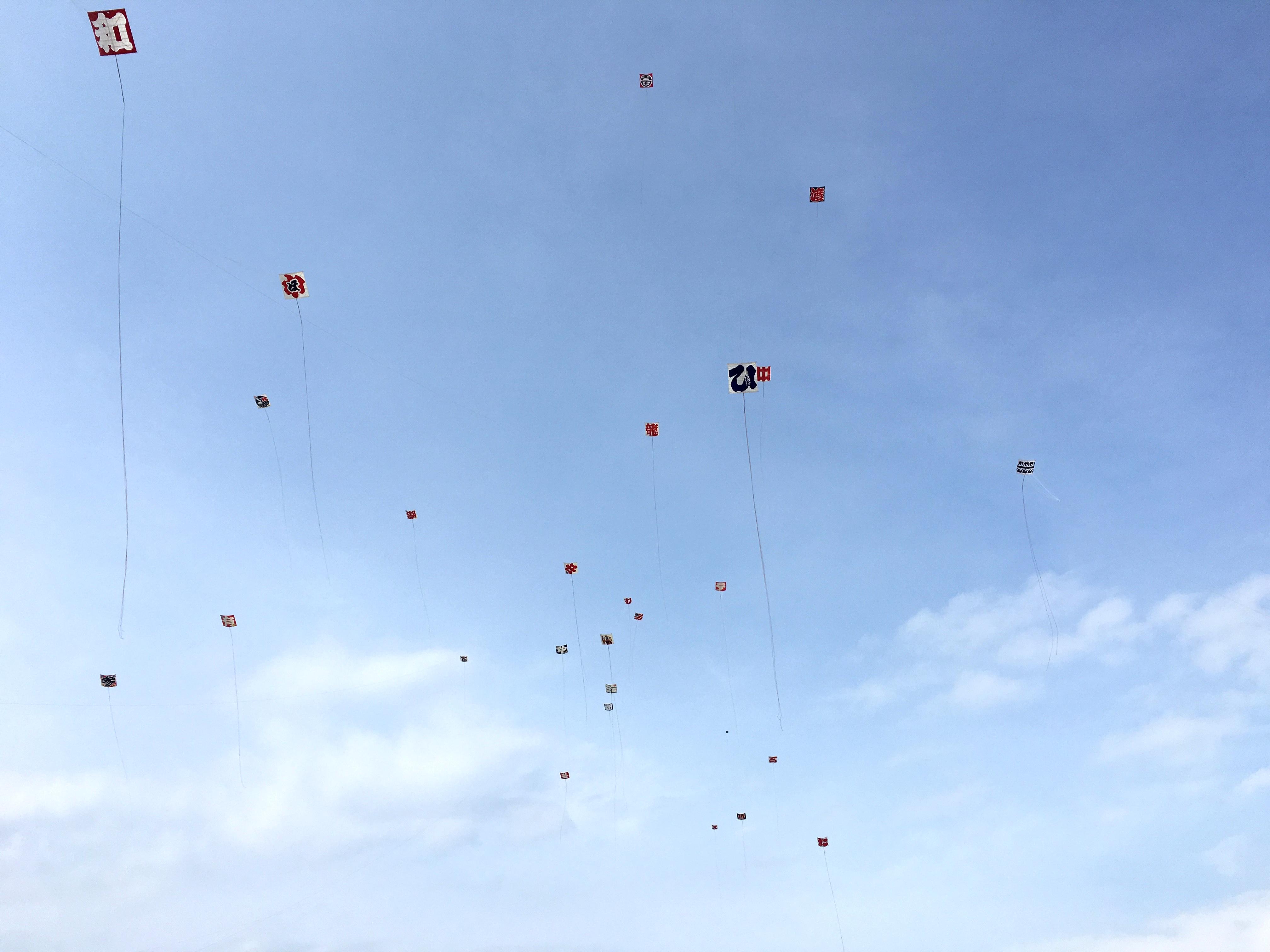 平成28年度伝承会で揚がっている各町の凧