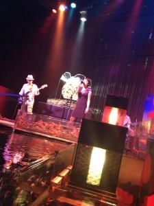 Art Aquarium2012でのLanguageライブ