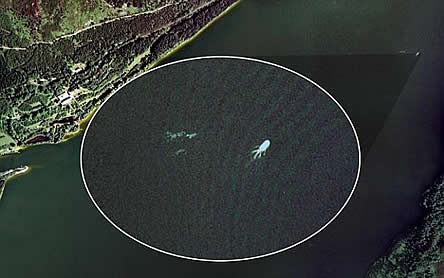 Google Earthで、ネッシー発見?