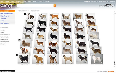 Bing Visual Search