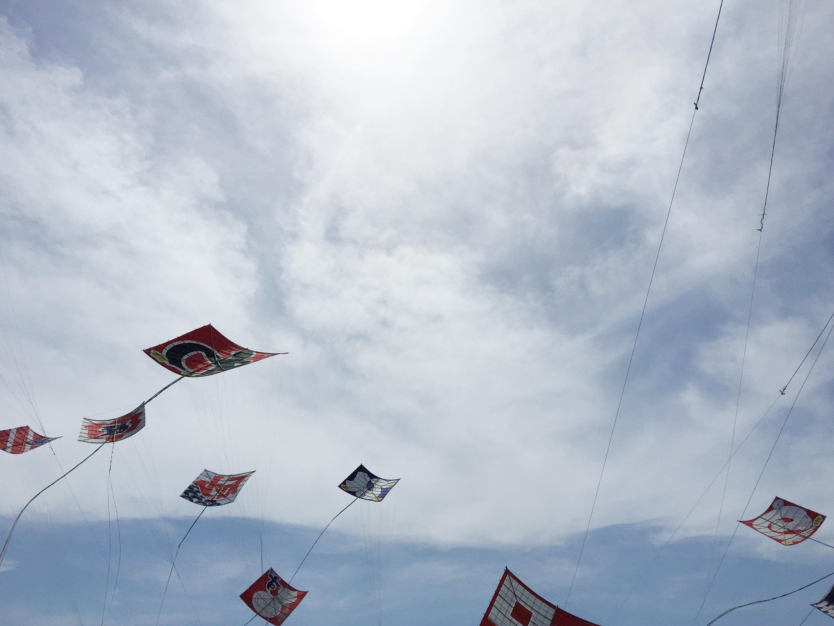 凧場での開会式直後の様子
